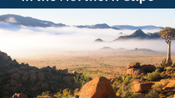 3 Things you have to do in the Northern Cape